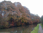 Autumn Leaves Leeds Liverpool Canal