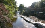 Tavistock Canal: The River Tavy
